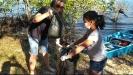 Projeto Mangue Limpo
